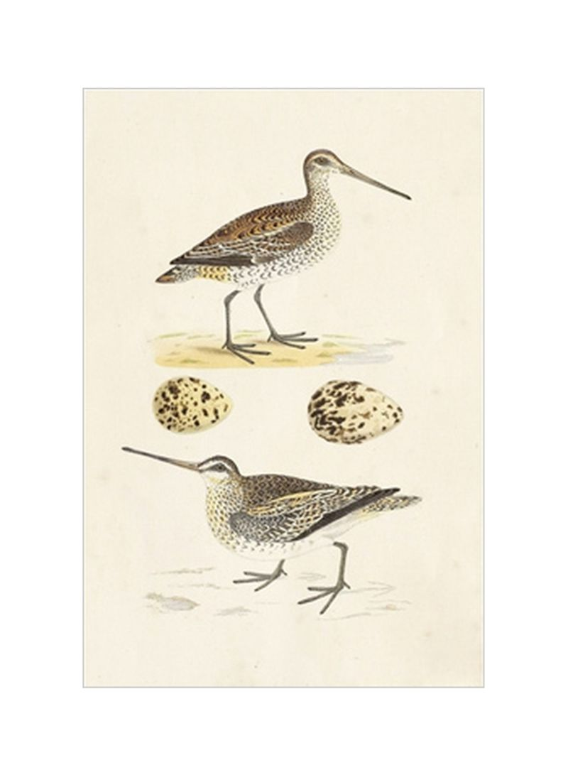 Sandpipers And Eggs III Wall Poster Brown/Beige 80x3.5x90 centimeter