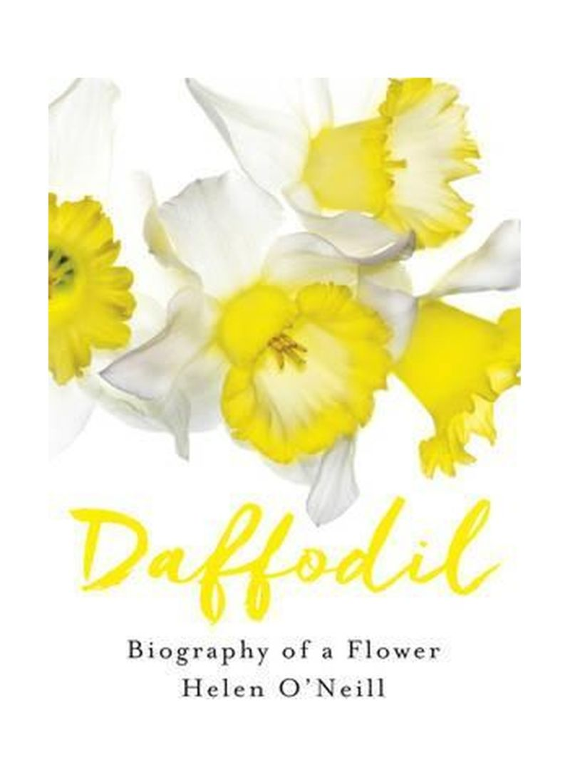 Daffodil: Biography Of A Flower Hardcover