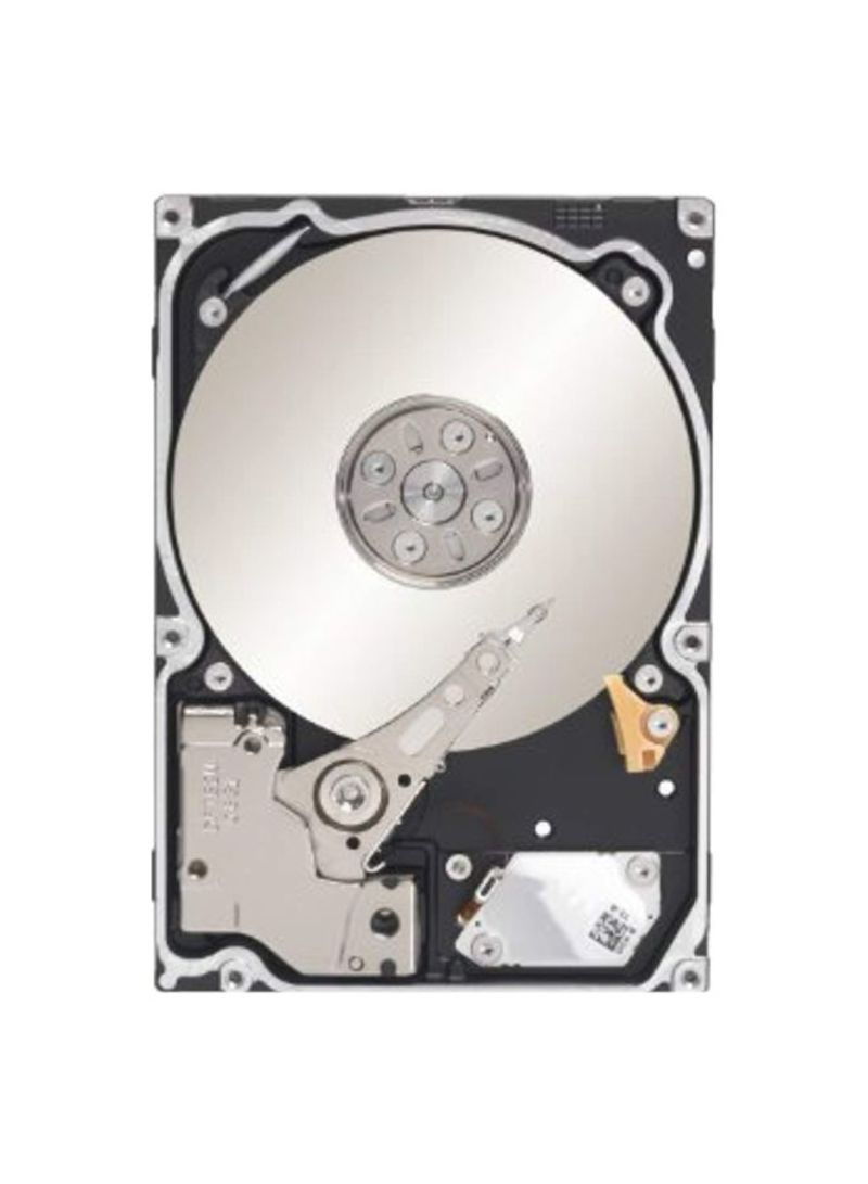 Constellation SAS Internal Bare Hard Drives Silver 1 TB